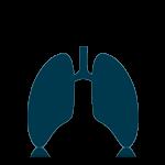 Theranove pneumologie